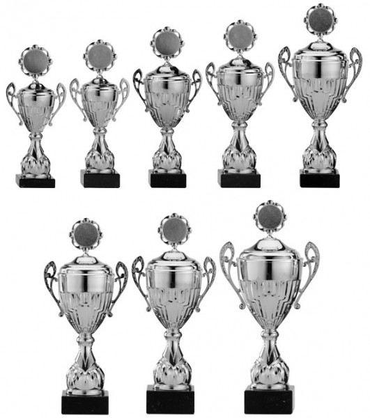 8er-Serie Pokale A4002 inkl. Gravur und Emblem