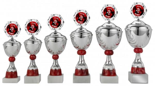 6er-Serie Pokale S421 inkl. Gravur und Emblem